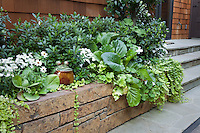 Stone faced planter box as raised bed with shade tolerant plants for small space urban townhome patio garden