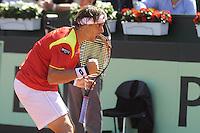 GIJÓN. 14 DE SEPTIEMBRE DE 2012. SEMIFINAL COPA DAVIS ENTRE ESPAÑA Y USA. DAVID FERRER..FOTO: PEDRO PASCUAL / LOF