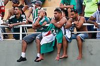 ATENÇÃO EDITOR: FOTO EMBARGADA PARA VEÍCULOS INTERNACIONAIS SÃO PAULO,SP,16 SETEMBRO 2012 - CAMPEONATO BRASILEIRO - PALMEIRAS x CORINTHIANS - Torcedores  do Palmeiras  durante partida Palmeiras x Corinthians válido pela 25º rodada do Campeonato Brasileiro no Estádio Paulo Machado de Carvalho (Pacaembu), na região oeste da capital paulista na tarde deste domingo (16).(FOTO: ALE VIANNA -BRAZIL PHOTO PRESS)