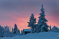 Europe/Finlande/Laponie/Levi: dans la montagne de Levi