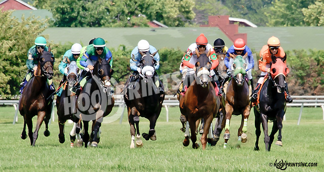 Sarbanes winning at Delaware Park on 7/23/14