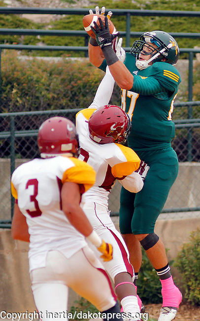 OCTOBER 4, 2014 -- Luke Whalen #87 of Black Hills State tries to haul in a reception only to have it stripped away by Colorado Mesa defenders during their Rocky Mountain Athletic Conference game Saturday at Lyle Hare Stadium in Spearfish, S.D.  (Photo by Dick Carlson/Inertia)