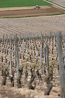 Europe/France/Bourgogne/89/Yonne/env Saint-Bris-le-Vineux: Paysage de l'Auxerrois Tracteur et Vignoble