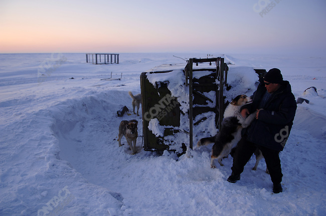 Vladilen Kavry, hunter and WWF (World Wildlife Fund) co-ordinator of the Polar Bear Patrol greeted his dogs in the early hours of the morning in his village, Vankarem. Vankarem, Chukotka Autonomous Okrug, Russia, April 4, 2007.