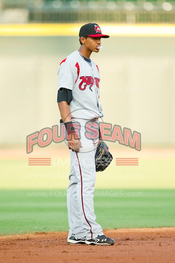Carolina Mudcats shortstop Erik Gonzalez (7) on defense against the Winston-Salem Dash at BB&T Ballpark on July 25, 2013 in Winston-Salem, North Carolina.  The Mudcats defeated the Dash 5-4.  (Brian Westerholt/Four Seam Images)