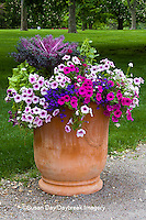 63821-22708 Container with petunias, dianthus, and lobelia,  Cantigny Park at Wheaton  IL