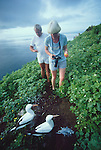 Galapagos Islands, Ecuador, Blue-footed boobie, Sula nebouxii, tame wildlife, tourists,.