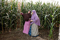 Maryam, a young Muslim Sister, stands in front of a field in a rural village with a woman from the area. Founded in Egypt in 1933, the Muslim Sisterhood is one of many chapters of the powerful and well-structured organization of the Muslim Brotherhood. Egypt, June 13th, 2012.