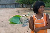 Mato Grosso State, Brazil. Aldeia Metuktire (Kayapo). Ngre'ora Metuktire. with cooked Pacu fish on a banana leaf.