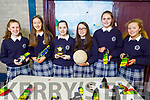 Students Clodagh Coffey, Megan Dennehy, Lauren O'Connor Aine Murphy, Ciara Cronin and Muireann Walsh, winners of the Intermediate category at the Student Entreprise Award Intermediate  in Presentation Castleisland on Friday