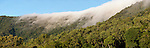 Cloudfall on rainforest covered mountain range of Cairns