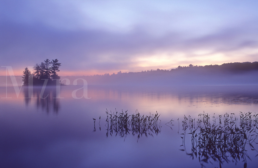 Canada, Ontario, Mackay Lake, dawn  with island in background