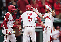 NWA Democrat-Gazette/BEN GOFF @NWABENGOFF<br /> Christian Franklin (from left) and Jacob Nesbit welcome Casey Opitz, Arkansas catcher, at home plate after he hit a  home run, scoring Nesbit, in the 2nd inning vs LSU Thursday, May 9, 2019, at Baum-Walker Stadium in Fayetteville.