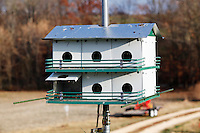 """One of the three 12-compartment purple martin homes Dennis and Loretta Sitter own on Friday, Nov. 19, 2010 at their home in Jonesboro, Illinois. The couple has been attracting purple martins for """"about 8 years, or off and on for 20 years."""""""