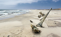 The remains of this vessel that was carrying troops and supplies from London to the Allied forces in Africa during WWII.  It wrecked on the Skeleton Coast in 1942.