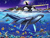 Interlitho, Lorenzo, REALISTIC ANIMALS, paintings, whales, lighthouse(KL3871,#A#) realistische Tiere, realista, illustrations, pinturas ,puzzles