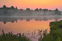 Morning fog on Highland Pond<br />