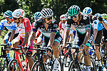 The peloton including Peter Sagan (SVK) and Emanuel Buchmann (GER) Bora-Hansgrohe during Stage 3 of Criterium du Dauphine 2020, running 157km from Corenc to Saint-Martin-de-Belleville, France. 14th August 2020.<br /> Picture: ASO/Alex Broadway | Cyclefile<br /> All photos usage must carry mandatory copyright credit (© Cyclefile | ASO/Alex Broadway)