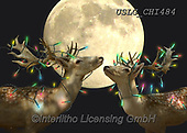 CHIARA,CHRISTMAS ANIMALS, WEIHNACHTEN TIERE, NAVIDAD ANIMALES, paintings+++++,USLGCHI484,#XA# ,funny ,funny