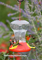 01162-12606<br /> Ruby-throated Hummingbirds (Archilochus colubris) at feeder near flower garden,  Marion Co.  IL