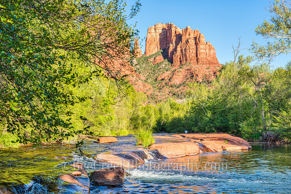 Oak Creek with Cathedral Rock in the background