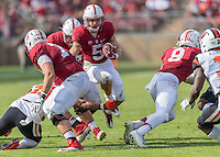 Stanford Football vs Oregon State, November 5, 2016