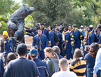 September 8, 2012: California Football players touching the Big Bear before the start of game against Southern Utah at Memorial Stadium, Berkeley, Ca