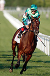 August 10, 2019 : Cafe Americano, ridden by Irad Ortiz Jr., after winning the Pucker Up Stakes during Arlington Million Day at Arlington International Racecourse in Arlington Heights, Illinois. Jon Durr/Eclipse Sportswire/CSM