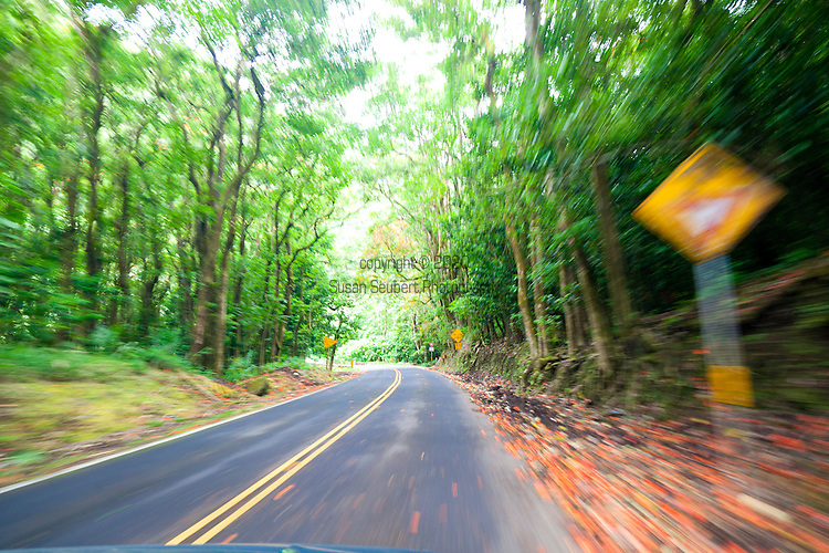 The narrow, winding road to Hana as seen from the car window.
