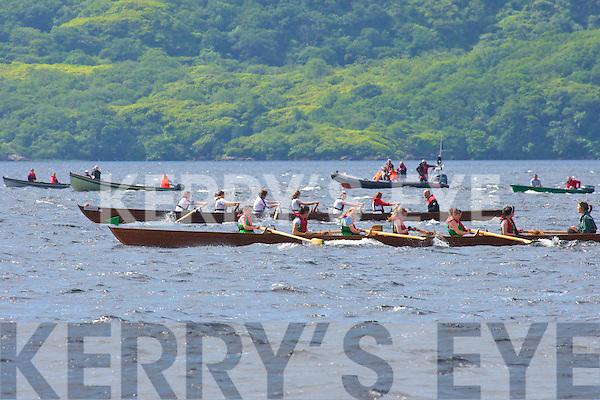 the Killarney Regatta in Mahony's Point on Sunday