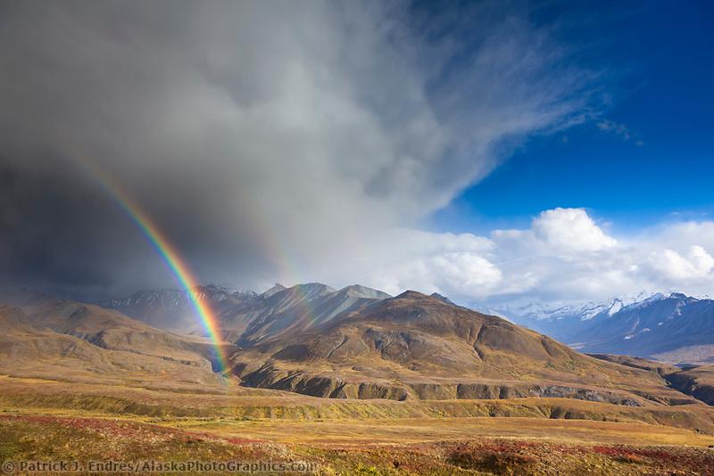 Rainbow arcs over the autumn tundra in front of the Alaska range mountains in Denali National park, interior, Alaska.