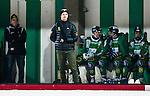 Stockholm 2014-11-19 Bandy Elitserien Hammarby IF - Tillberga Bandy :  <br /> Hammarbys David Pizzoni Elfving vid sidan av planen med ena armen i mitella  under matchen mellan Hammarby IF och Tillberga Bandy <br /> (Foto: Kenta J&ouml;nsson) Nyckelord:  Elitserien Bandy Zinkensdamms IP Zinkensdamm Zinken Hammarby Bajen HIF HeIF Tillberga TB skada skadan ont sm&auml;rta injury pain