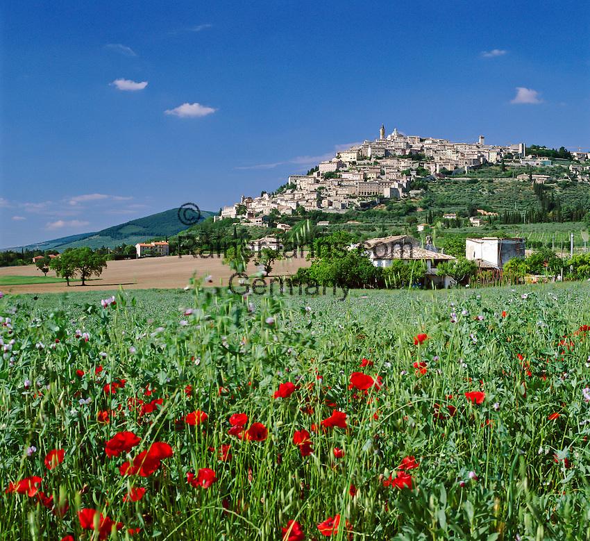Italy, Umbria, Trevi: hilltop village is on the list of Italy's most beautiful villages | Italien, Umbrien, Trevi: Stadt in der Provinz Perugia, wurde in die Liste der schoensten Doerfer Italiens aufgenommen