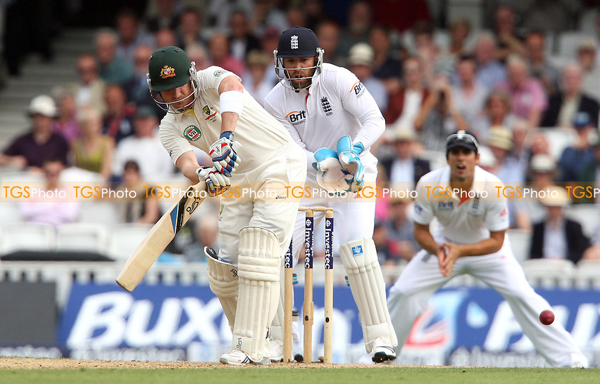 Brad Haddin of Australia - England vs Australia - 2nd day of the 5th Investec Ashes Test match at The Kia Oval, London - 22/08/13 - MANDATORY CREDIT: Rob Newell/TGSPHOTO - Self billing applies where appropriate - 0845 094 6026 - contact@tgsphoto.co.uk - NO UNPAID USE