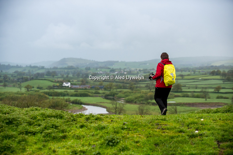 Monday  01 May 2017 Pictured: A Woman looks out at a view of the Towy valley at Dryslwyn Castle , Carmarthenshire