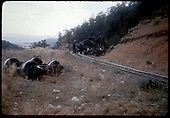 Men on track viewing wrecked equipment.<br /> D&amp;RGW