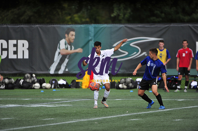 Stevenson University men's soccer team dropped a close game to Franklin & Marshall 1-0, as the Diplomats scored the winning goal 2:30 into the second overtime period Tuesday evening at Mustang Stadium in Owings Mills.
