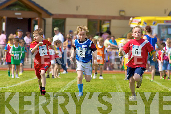 County Kerry Community Games