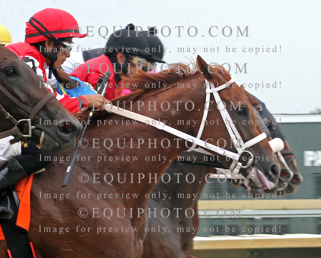Action at Parx Racing in Bensalem, Pennsylvania August 14, 2012.  Photo By Barbara Weidl/EQUI-PHOTO