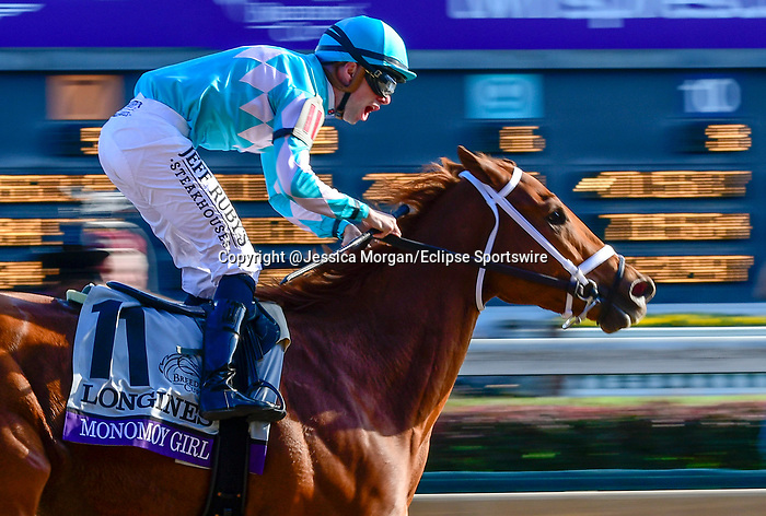 November 3, 2018: Monomoy Girl #11, ridden by Florent Geroux, wins the Longines Breeders' Cup Distaff on Breeders' Cup World Championship Saturday at Churchill Downs on November 3, 2018 in Louisville, Kentucky. Jessica Morgan/Eclipse Sportswire/CSM