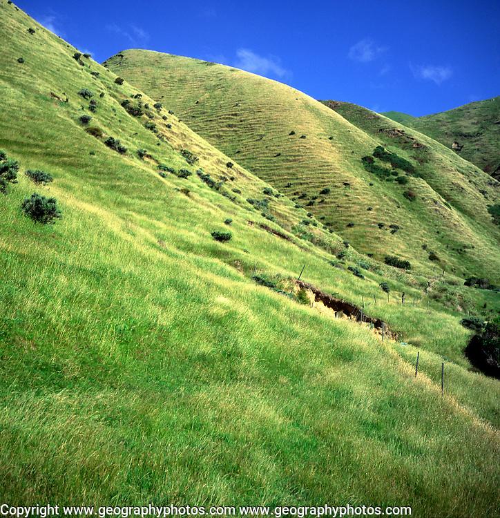 Steep grassy hills of farming land, Kapiti, near Wellington, North Island, New Zealand