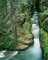 Bearing Creek flowing through Sunrift Gorge; Glacier National Park, MT