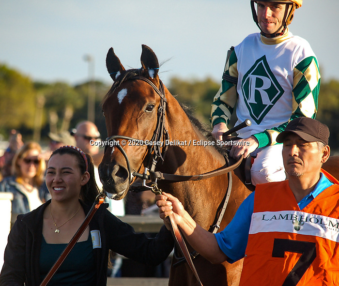 March 7, 2020: #11, KING GUILLERMO, and Jockey Samy Camacho upset the field in the $400,000 Grade II Lambholm South Tampa Bay Derby with a 49-1 longshot win for Trainer Juan Avila on Tampa Bay Derby Day on March 7, 2020 in Tampa, FL.  (Photo by Casey Delikat/Eclipse Sportswire/CSM)