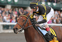 Gypsy Robin and jockey John Velazquez win the 14th running of the Lexus Raven Run, Grade 2 $25,000 at Keeneland Racecourse for owner King 9 Stables, Gatewood Bell, Bret Jones and Wsley Ward and trainer Wesley Ward.  October 20, 2012.