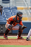 Baltimore Orioles catcher Jose Montanez (73) waits to receive a pitch during a Florida Instructional League game against the Tampa Bay Rays on October 1, 2018 at the Charlotte Sports Park in Port Charlotte, Florida.  (Mike Janes/Four Seam Images)