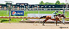 Tonight at Noon winning at Delaware Park on 6/19/13