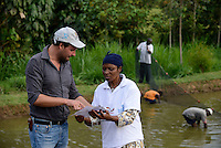 KENYA Kisumu, Tilapia fish farming in pond / KENIA Kisumu, GIZ Trilateral Tilapia Projekt, Foerderung von Tilapia Aquakultur in Fischteichen, Fisch Farm von Frau Zinad Deen , im Gespraech mit GIZ Mitarbeiter Ladislao di Domenica