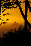 """Views from Ecola State Park.  The first recorded White journey to what is now Cannon Beach was made by William Clark, one of the leaders of the Lewis and Clark Expedition in early 1806. The expedition was wintering at Fort Clatsop, roughly 20 miles to the north near the mouth of the Columbia River. In December 1805, two members of the expedition had returned to camp with blubber from a whale that had beached several miles south, near the mouth of what is now known as Ecola Creek. Knowing that the expedition needed some variety in their monotonous winter diet, Clark decided to journey south from Fort Clatsop over Tillamook Head, which he described in his journal as """"the Steepest worst and highest mountain I ever assended [sic]…"""". From a place near the western cliffs of the headland he saw """"…the grandest and most pleasing prospects which my eyes ever surveyed, in front of a boundless Ocean…"""" That viewpoint is now called Clark's Point of View and can be accessed by a hiking trail from Indian Beach in Ecola State Park. Pictured here is the view of Tillamook Head Lighthouse which sits off the coast of Oregon at Ecola State Park."""