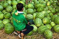 Pakse Market - a huge variety of foods and useful items are available at Pakse Market.  This includes such favorites as watermelons and coconuts.