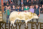 The Fat Stock Supreme Champion at the Dingle Mart on Saturday afternoon. From left: Michael Kelliher (chairman Dingle Mart), Padraig Martin (owner, Reenconnell, Dingle), David Wharton (purchaiser), Marie Wharton, Patrick Martin (owner's son), Neilus McAuliffe (manager Dingle Mart) and Padraig Feirtir (secretary Dingle Mart).